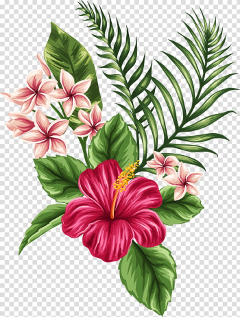 Flower Tropics Drawing , tropical, pink petaled flowers and leaves illustration transparent background PNG clipart png image transparent background