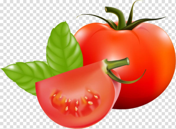 Plum tomato Cherry tomato Bush tomato Vegetable Fruit, Tomato leaf transparent background PNG clipart png image transparent background