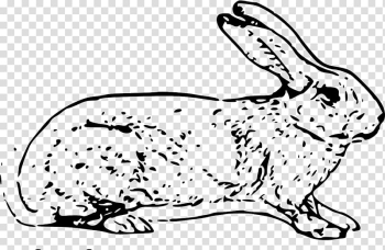 White Rabbit Easter Bunny Hare Domestic rabbit , White spots bunny transparent background PNG clipart png image transparent background