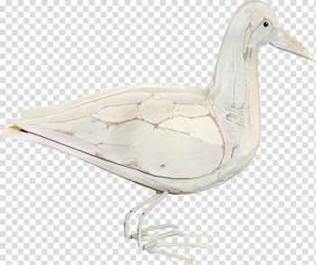 Duck American Pekin Domestic goose, White Duck transparent background PNG clipart png image transparent background