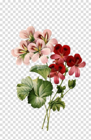 Brown and red flowering plants illustration, Flower bouquet Vintage clothing Floral design , botanical flowers transparent background PNG clipart png image transparent background