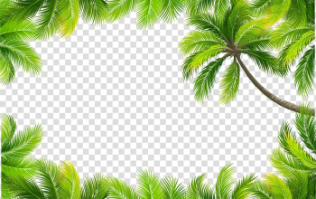 Coconut trees frame layout, Euclidean Color, painted green leaves border transparent background PNG clipart png image transparent background
