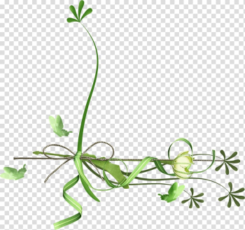 Leaf Flower , taobao page decoration transparent background PNG clipart png image transparent background