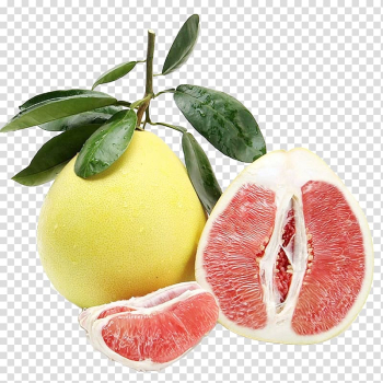 Guanxi Restaurant Pomelo Grapefruit Magusgreip, With the leaves of fresh fruit grapefruit transparent background PNG clipart png image transparent background