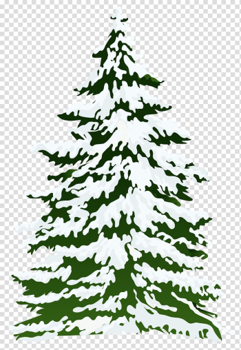 Pine tree covered with snow animated illustration, Pine Snow Tree , Winter Snowy Pine Tree transparent background PNG clipart png image transparent background