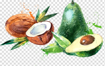 Coconut and avocado illustration, Coconut water Coconut milk Watercolor painting, Coconut mango fruit material transparent background PNG clipart png image transparent background
