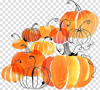 Orange pumpkin , Autumn Harvest festival Thanksgiving Flyer, pumpkin transparent background PNG clipart png image transparent background