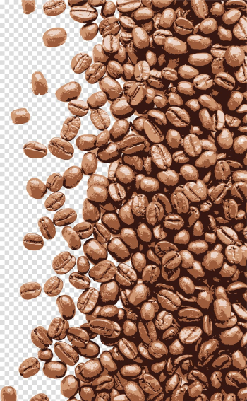 Brown coffee bean lot, Coffee Latte Cappuccino Espresso Cafe, Hand painted brown coffee beans transparent background PNG clipart png image transparent background