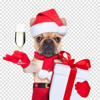 Dog Santa Claus Puppy Christmas card, Puppy Santa Claus transparent background PNG clipart png image transparent background