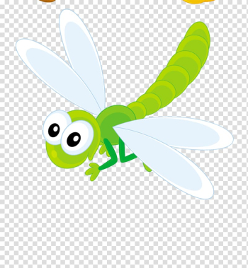 Dragonfly Insect , dragonfly transparent background PNG clipart png image transparent background