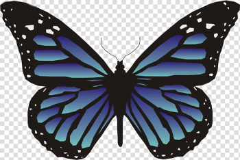 Butterfly Animation , blue butterfly transparent background PNG clipart png image transparent background