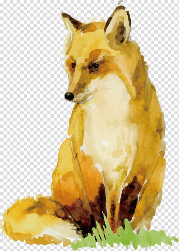 Orange fox painting, Watercolor painting Paper Animal Drawing, Watercolor Fox Design transparent background PNG clipart png image transparent background