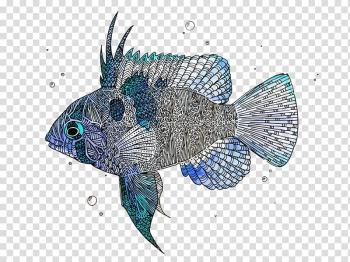 Fish, fishes transparent background PNG clipart png image transparent background