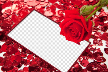 Frame Heart High-definition video, Red Flower Frame HD transparent background PNG clipart png image transparent background