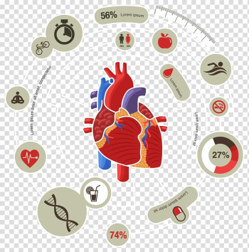 Human heart with captions illustration, Myocardial infarction Heart Cardiovascular disease Symptom, Medical Biology Innovation Chart transparent background PNG clipart png image transparent background