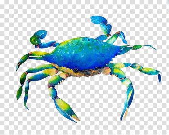 Dungeness crab Watercolor painting Art, Hand-painted blue crab transparent background PNG clipart png image transparent background