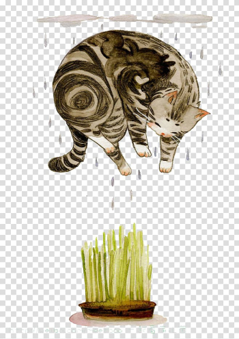 Cat Watercolour Flowers Illustration, Watercolor cat transparent background PNG clipart png image transparent background