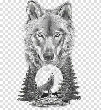 Gray wolf illustration, Gray wolf Art In Motion Tattoo Studio Tattoo artist Drawing, Sketch animal wolf transparent background PNG clipart png image transparent background