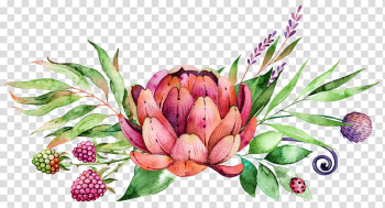 Watercolor painting Flower, succulent plants, pink and red flower illustration transparent background PNG clipart png image transparent background