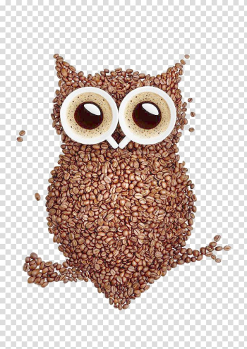 Brown owl , Coffee bean Latte Tea Cafe, owl transparent background PNG clipart png image transparent background