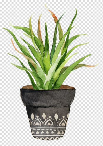 Green leafed plant with gray pot painting, Watercolor painting Cactaceae Printing Printmaking, Potted aloe transparent background PNG clipart png image transparent background