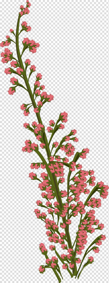 Drawing Tropical Flowers Cut flowers, flower transparent background PNG clipart png image transparent background