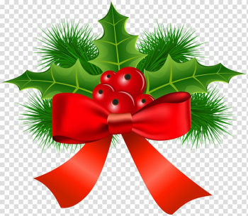 Christmas ornament Common holly , mistletoe transparent background PNG clipart png image transparent background
