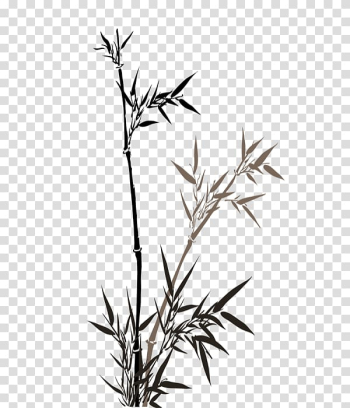 China Bamboo Wall Mural , Bamboo leaves transparent background PNG clipart png image transparent background