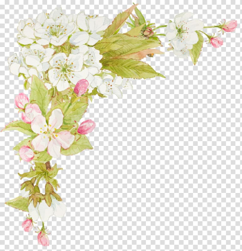 White and pink petaled flowers painting, Flower Watercolor painting Floral design, jasmine flowers transparent background PNG clipart png image transparent background