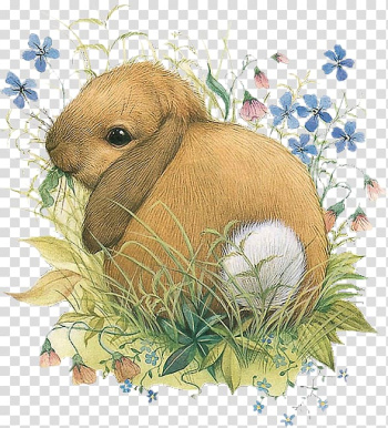 Domestic rabbit Vera the Mouse Watercolor painting Illustrator, painting transparent background PNG clipart png image transparent background