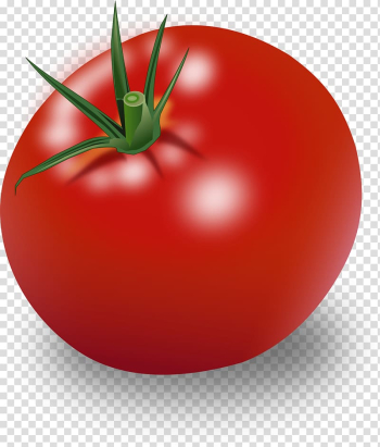Vegetable Tomato sauce Cherry tomato , vegetable transparent background PNG clipart png image transparent background