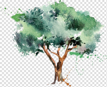 Green and brown tree illustration, Olive oil Tree, olive transparent background PNG clipart png image transparent background