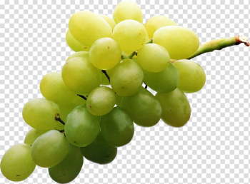 Sultana Muscat Table grape Seedless fruit, grape transparent background PNG clipart png image transparent background