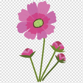 Chocolate cosmos Flower Pink Anthesis, flower transparent background PNG clipart png image transparent background
