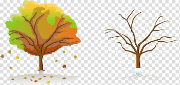 Season Tree Autumn, Autumn and winter trees transparent background PNG clipart png image transparent background