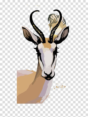 Springbok Watercolor painting Illustration, Sheepshead transparent background PNG clipart png image transparent background