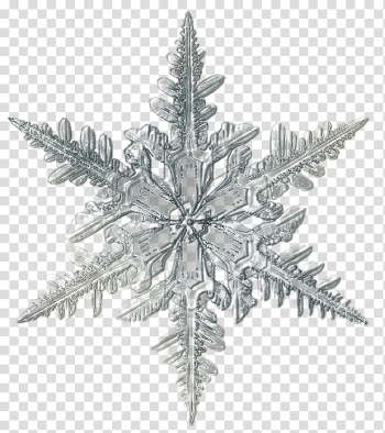 Snowflake Microscope Ice Crystal, christmas snowflake transparent background PNG clipart png image transparent background