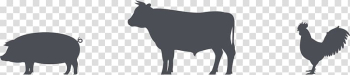 Cattle Chicken as food Pig Meat, chicken transparent background PNG clipart png image transparent background