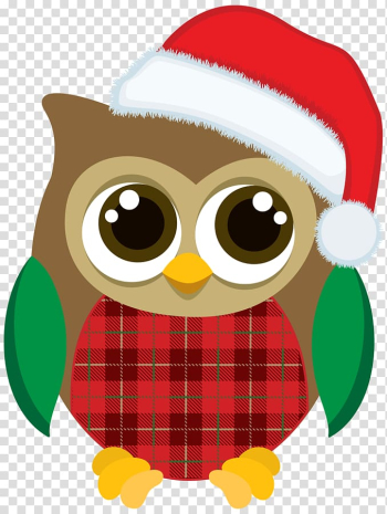 Christmas Graphics Owl Christmas Christmas Day, owl transparent background PNG clipart png image transparent background