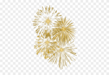 Gold Fireworks Transparent Background png image transparent background