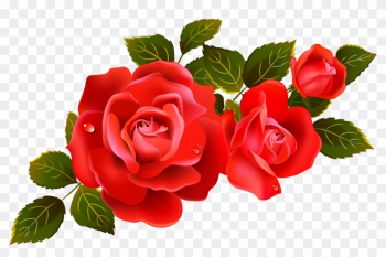 Clipart Marvellous Design Red Rose Clipart Large Roses - Transparent Background Roses Png png image transparent background