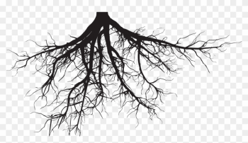 Just The Tip - Tree With Roots Silhouette png image transparent background