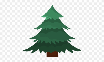 Natural Pine Tree With Branches Design - Pine png image transparent background