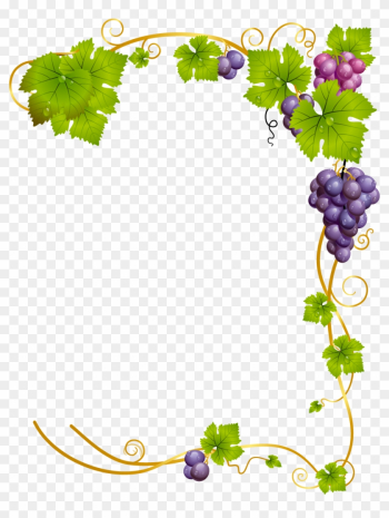 Common Grape Vine Wine - Wine Frame Png png image transparent background