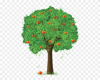 Painted Apple Tree Png Clipart - Apple Tree Png png image transparent background