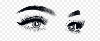 28 Collection Of Eyebrow Drawing Png - Lash Extension Drawing png image transparent background