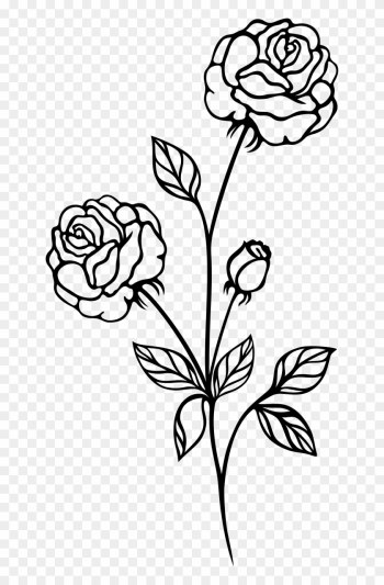 Rose Black And White Clip Art Flowers Roses - Rose Plant Black And White png image transparent background