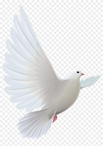 White Dove Transparent Png Clipartu200b Gallery Yopriceville - White Pigeon Flying Png png image transparent background