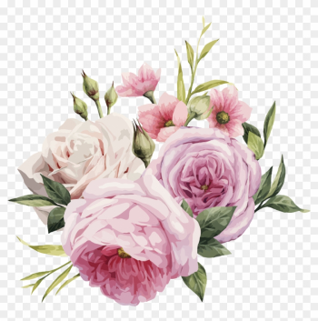 Pink Flowers Rose Color - Pink Rose Vector Png png image transparent background
