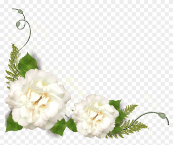 Png形式でダウンロード - White Roses Corner Png png image transparent background